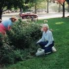 gardeners-luddington-libarary-maisie-adamson-2005