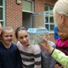 Pollinator Project Devon Elementary